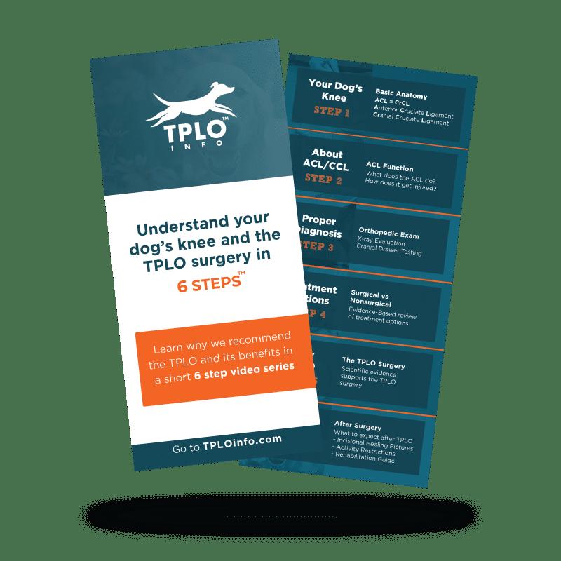 6 Steps Brochure 1