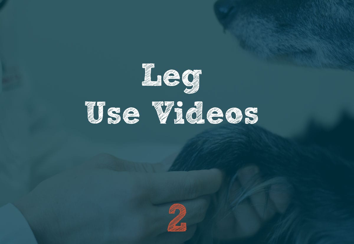 Leg Use Videos