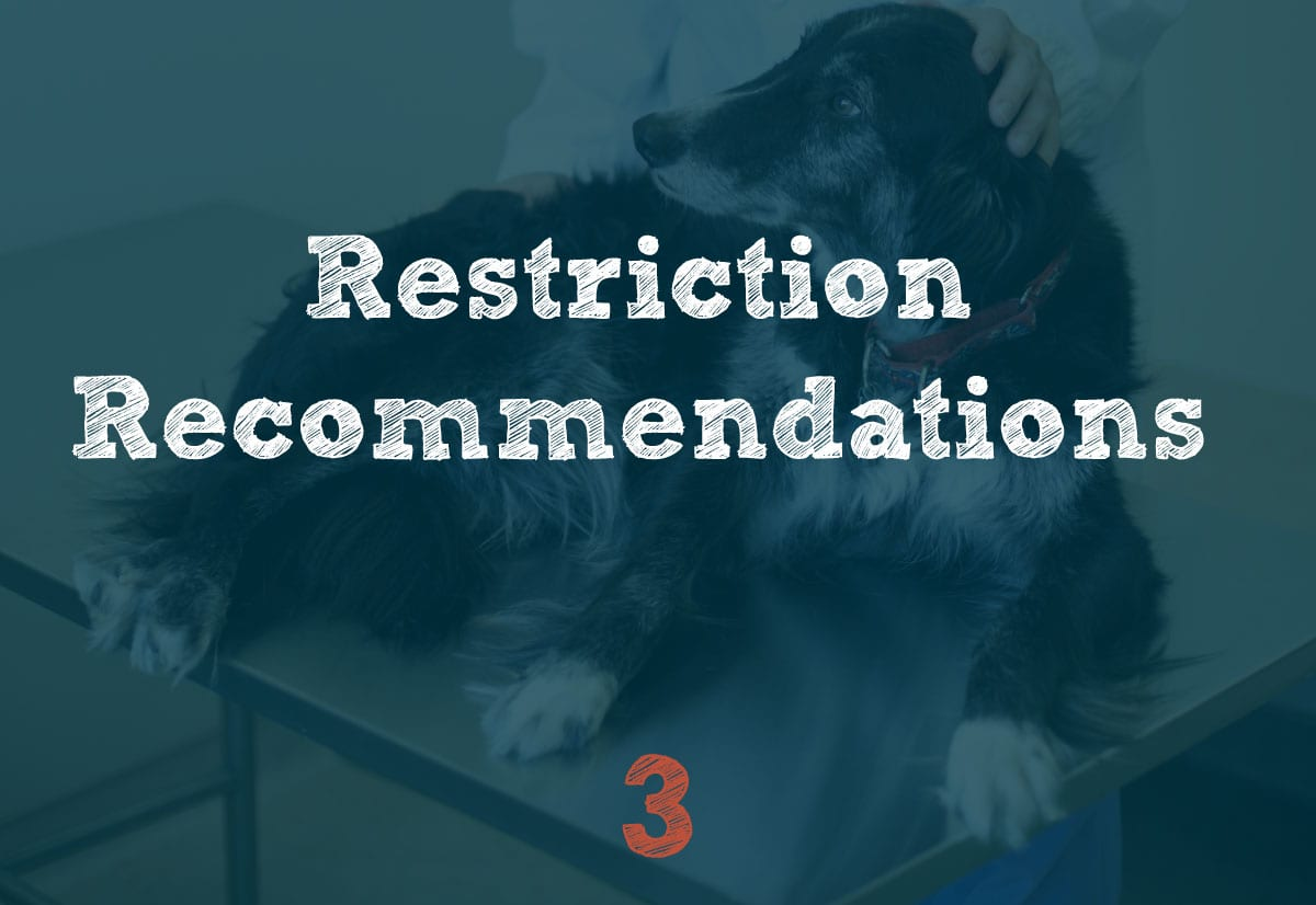 Restriction Recommendations